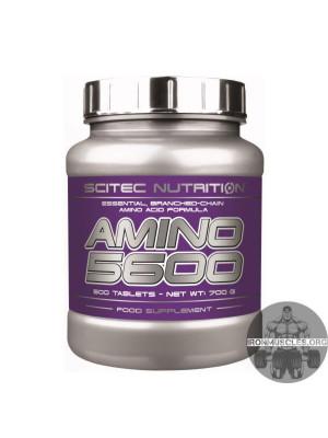 AMINO 5600 (500 таблеток)