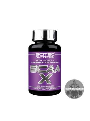 BCAA-x (120 капсул)