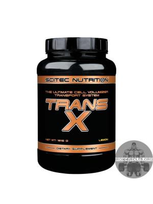 Trans-X (1.816 кг)