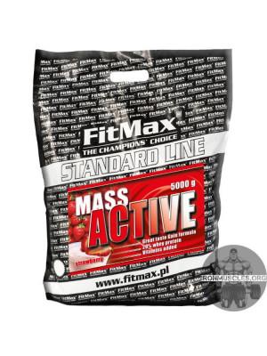 Mass Active (5 кг)