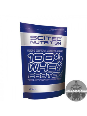 100% Whey Protein (500 г)