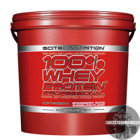 100% Whey Protein Professional (5 кг)
