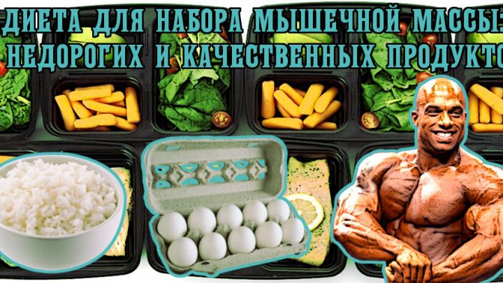 Диета для набора мышечной массы: девять недорогих и качественных продуктов