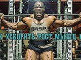 Как ускорить рост мышц ног