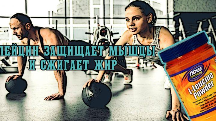 Лейцин защищает мышцы и сжигает жир