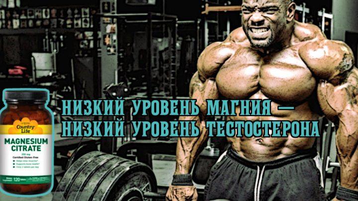 Низкий уровень магния — низкий уровень тестостерона
