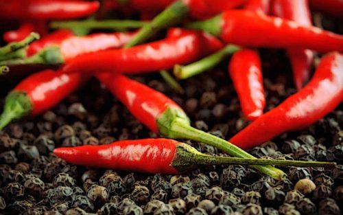 Перец чили является источником капсаицина