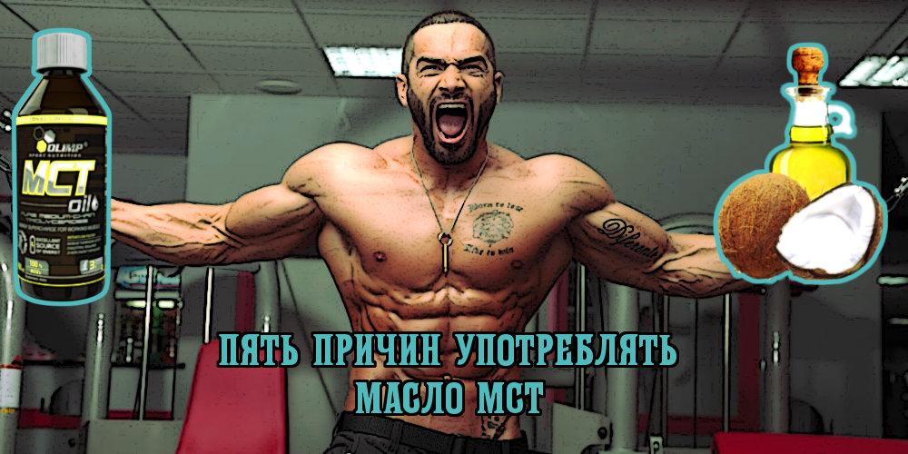 фитнес все о мышцах