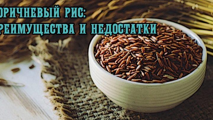 Коричневый рис: преимущества и недостатки