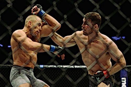 Спортивное питание для бойцов MMA