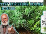 Экстракт карликовой пальмы для мужчин