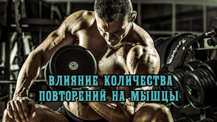 Влияние количества повторений на мышцы