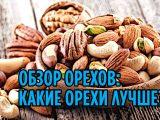 Обзор орехов: какие орехи лучше?