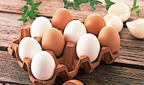 Сніданок бодібілдера повинен містити білок