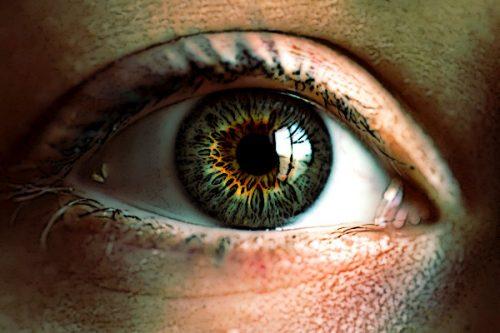 Таурин защищает сетчатку глаза от разрушения