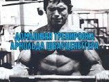Домашняя тренировка Арнольда Шварценеггера