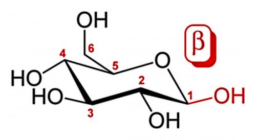 Молекула бета-глюкану